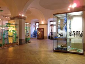 exhibition_440