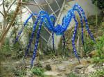 Veronika Richterová, PET-ART, pet lahev, umění z odpadu, recyklace, up-cycling, pavouk, pokoutník, botanická