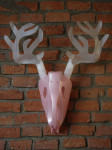 Stag of seven-point antlers