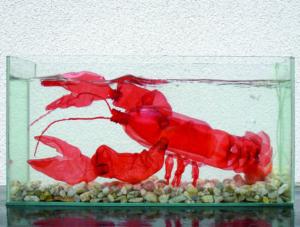 Veronika Richterová, PET-ART, pet lahev, umění z odpadu, recyklace, up-cycling, humr v akváriu