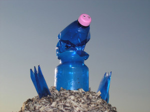 Veronika Richterová, PET-ART, pet lahev, umění z odpadu, recyklace, up-cycling, krtek