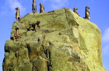 Sedm surikat